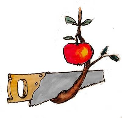 Owl Back To School / Little Brown Eule Auf Zweig Mit Tafel, Briefe Und  Bücher Lizenzfrei Nutzbare Vektorgrafiken, Clip Arts, Illustrationen. Image  14990754.